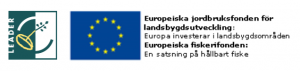 Logo Leader EJFLU EHFF