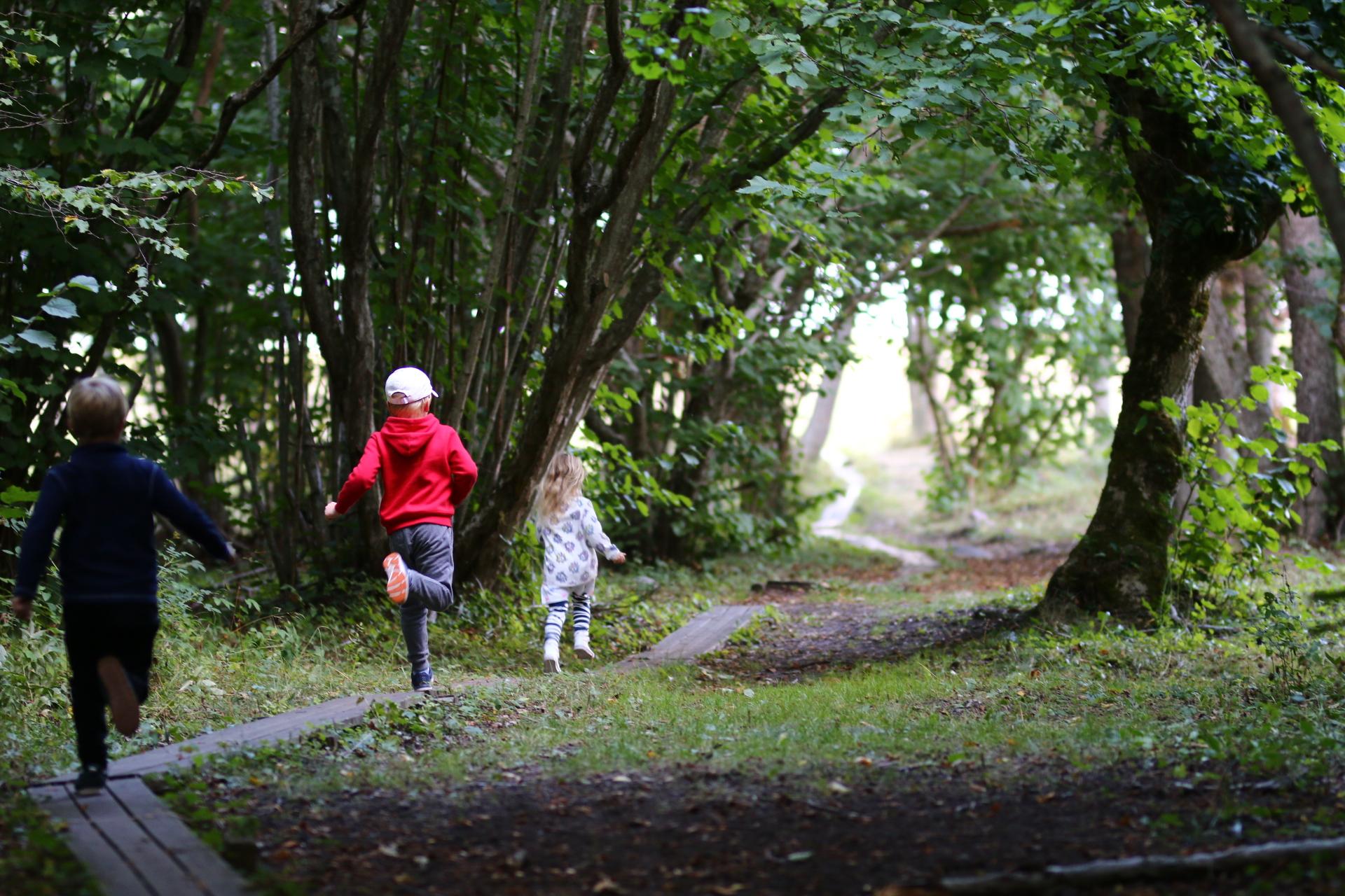 barn springer på en spång i en naturstig